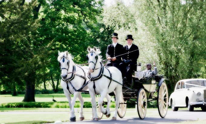 Wedding Horse & Carriage Oldham